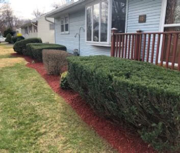 pro value landscaping and snow removal about work