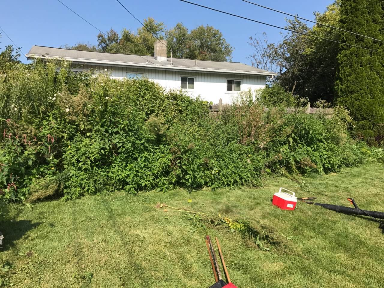 pro value landscaping and snow removal work gallery